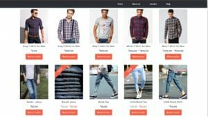 How to Create an eCommerce Website with WordPress – Online Store like Amazon and Flipkart 2017